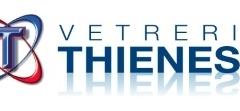 Vetreria thienese 100r